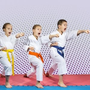Martial Arts Lessons for Kids in Hillsborough NJ - Punching Focus Kids Sync